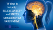 14 Ways To Instantly Relieve Anxiety and Stress Stimulating Your Vagus Nerve